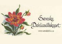 """Svenska Dahlias""""llskapet"""