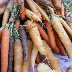 carrots-338185_1920